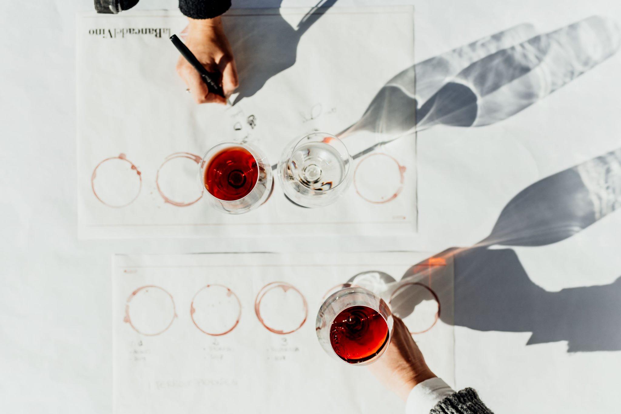 degustazione di vini alla Banca del Vino di Pollenzo